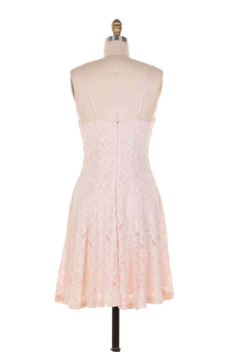 Everly Floral Lace Fit and Flare Dress Pink - Talis Collection