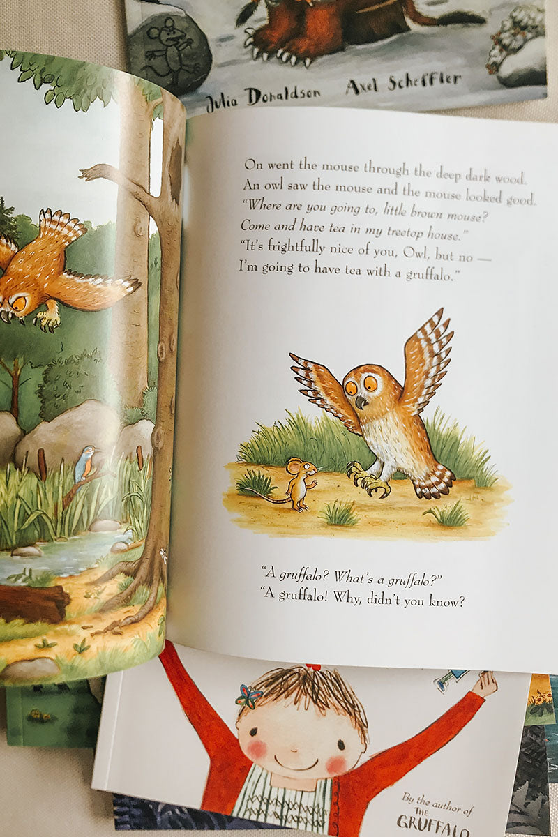 Julia Donaldson 10 Book Collection - Gruffalo
