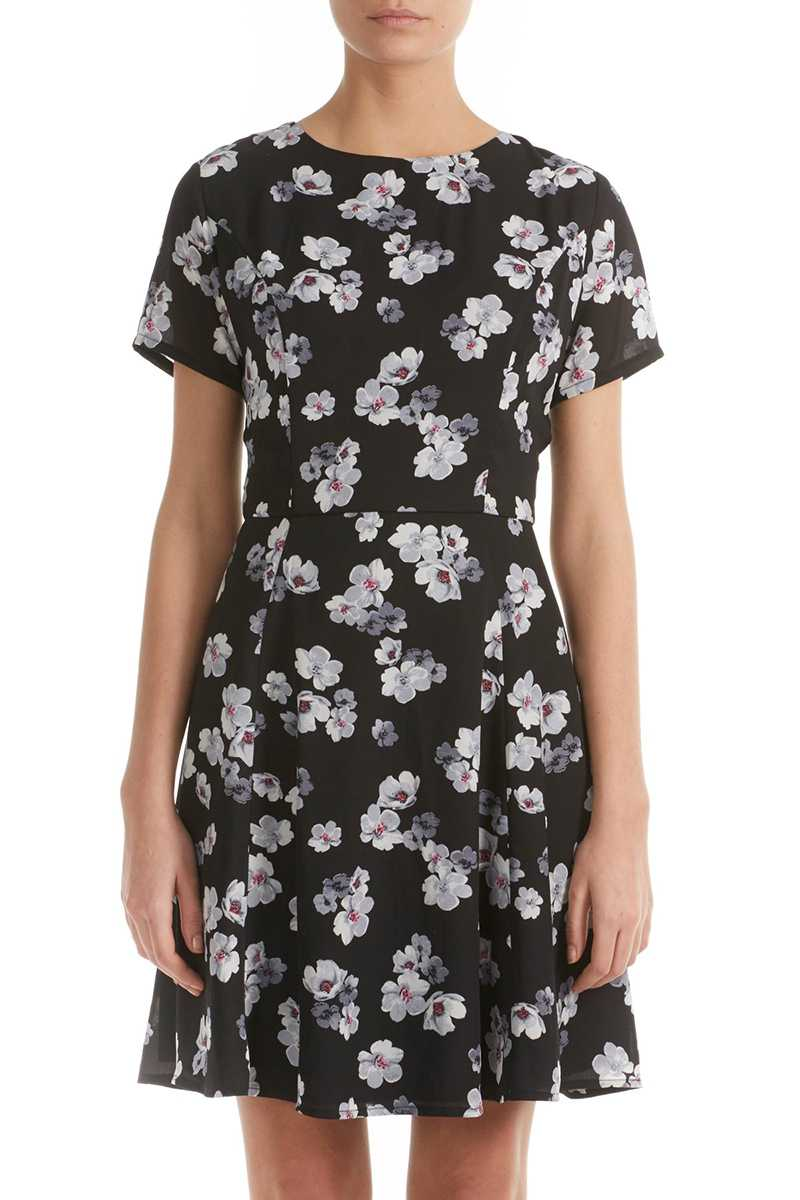 Poppy Lux Taura Floral Fit and Flare Dress