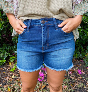 Vintage Dream High Rise Shorts