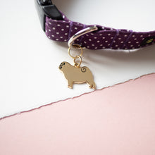 Pug dog tag on collar