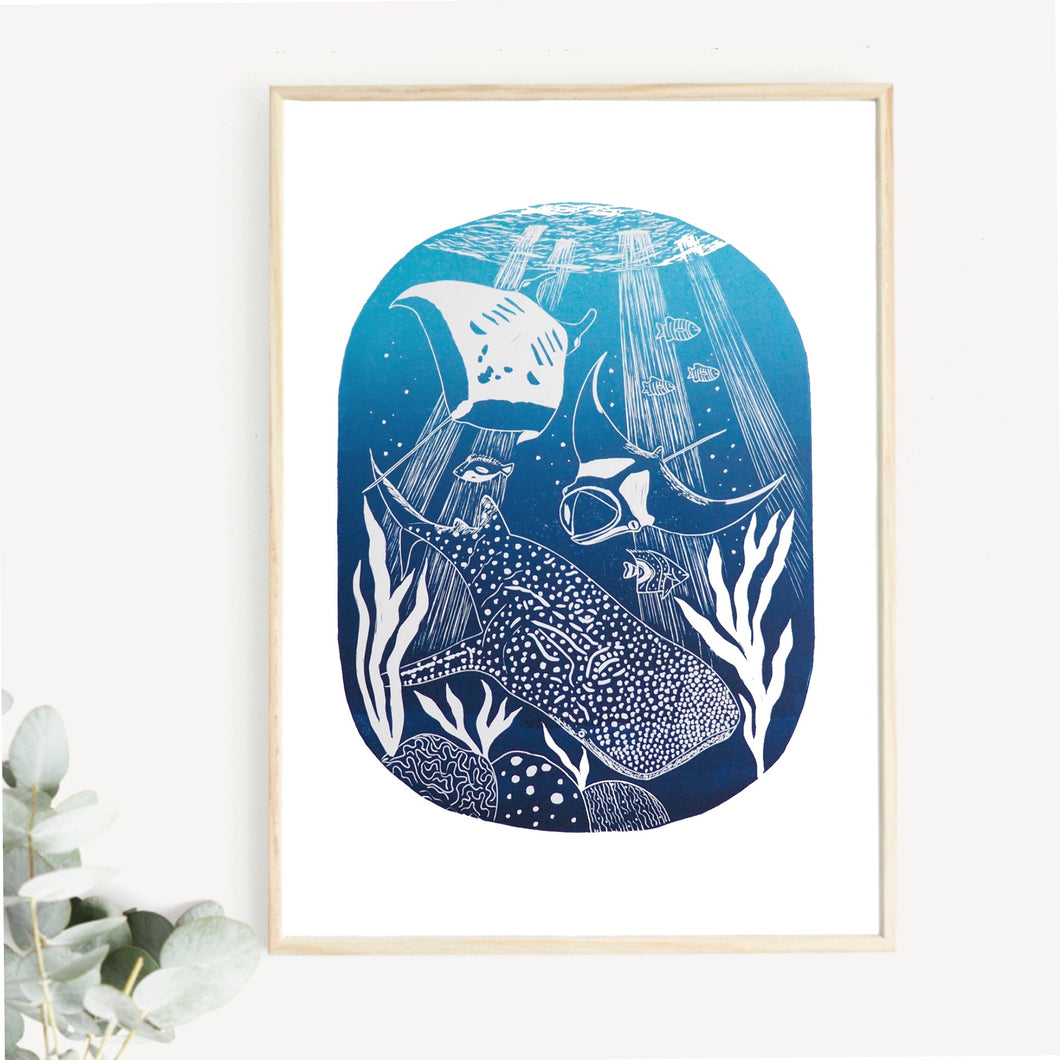 whale shark lino pinth