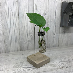 One Lab Pot Wooden Stand Hydrophonic Stand