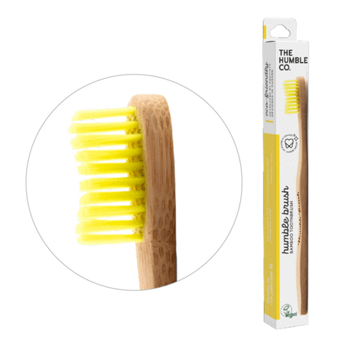 Adult Medium Toothbrush