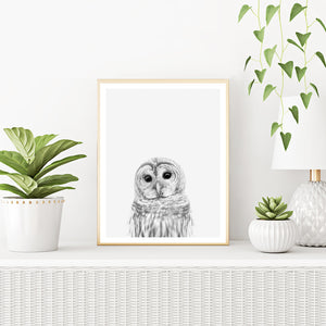 Framed Owl Art Print With Plants