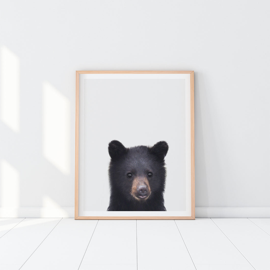 Framed Bear Art Print