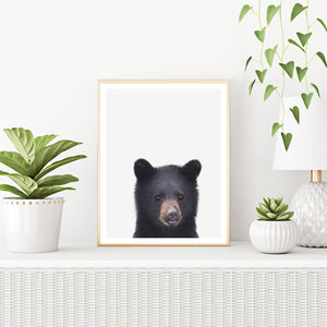 Framed Bear Art Print With Plants