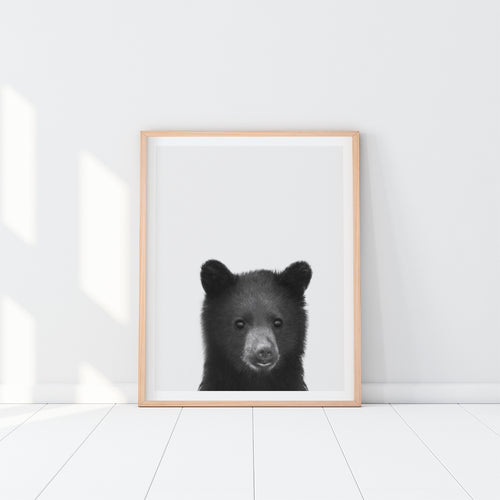 Black and White Framed Bear Art Print