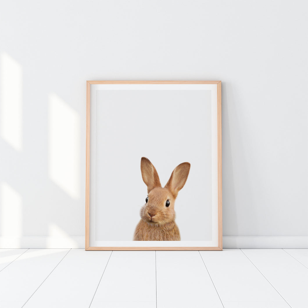 Framed Rabbit Art Print
