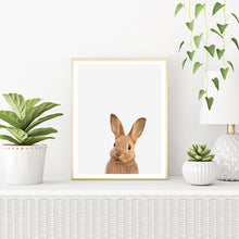 Framed Rabbit Art Print With Plants