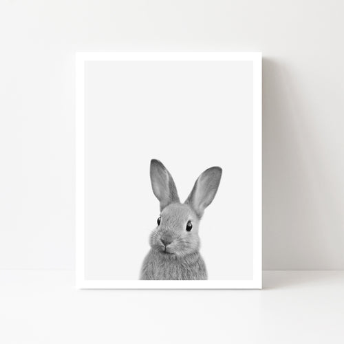 Black and White Bunny Art Print