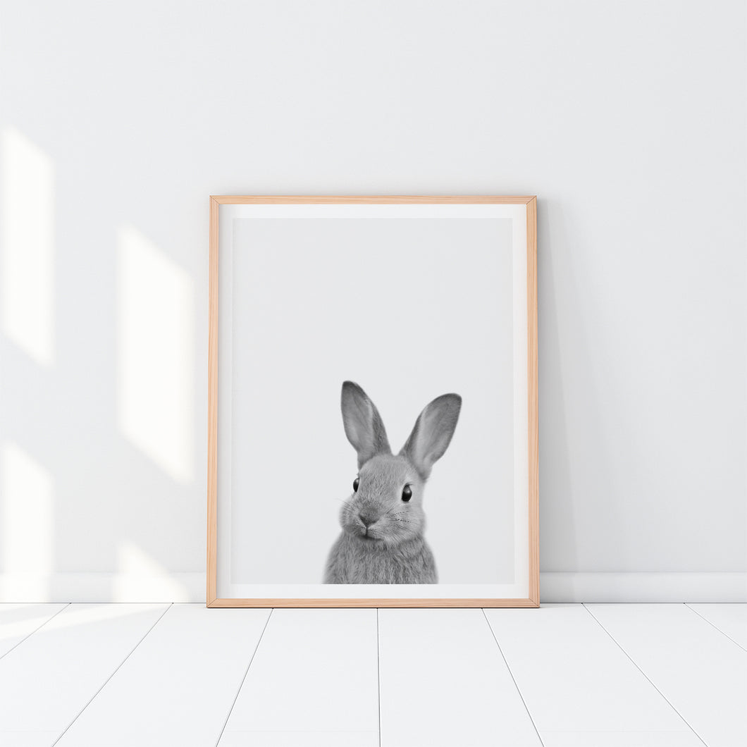 Black and White Framed Bunny Art Print
