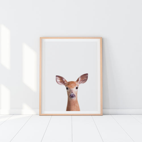 Framed Deer Art Print