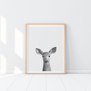 Black and White Framed Deer Art Print