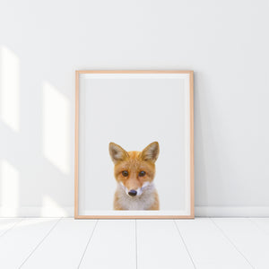 Framed Fox Art Print
