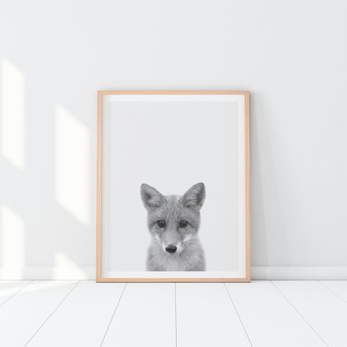 Black and White Framed Fox Art Print