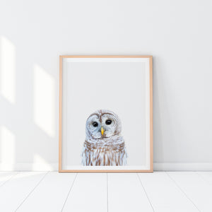 Owl Art Print In Wooden Frame