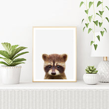Framed Racoon Art Print With Plants