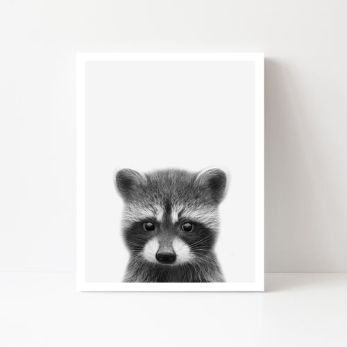 Black and White Racoon Art Print