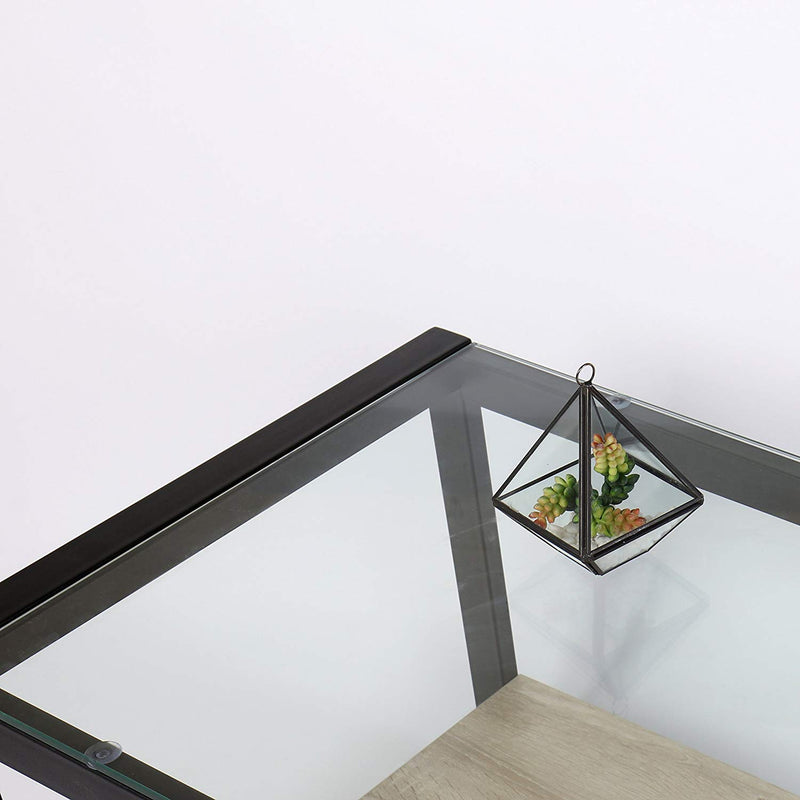 OLYMPIA Coffee Table Glass Top with Steel Frame & Wooden Shelf
