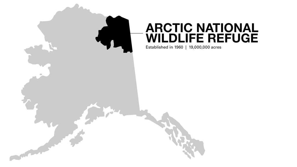 Packrafting Alaska's Arctic Wildlife Refuge