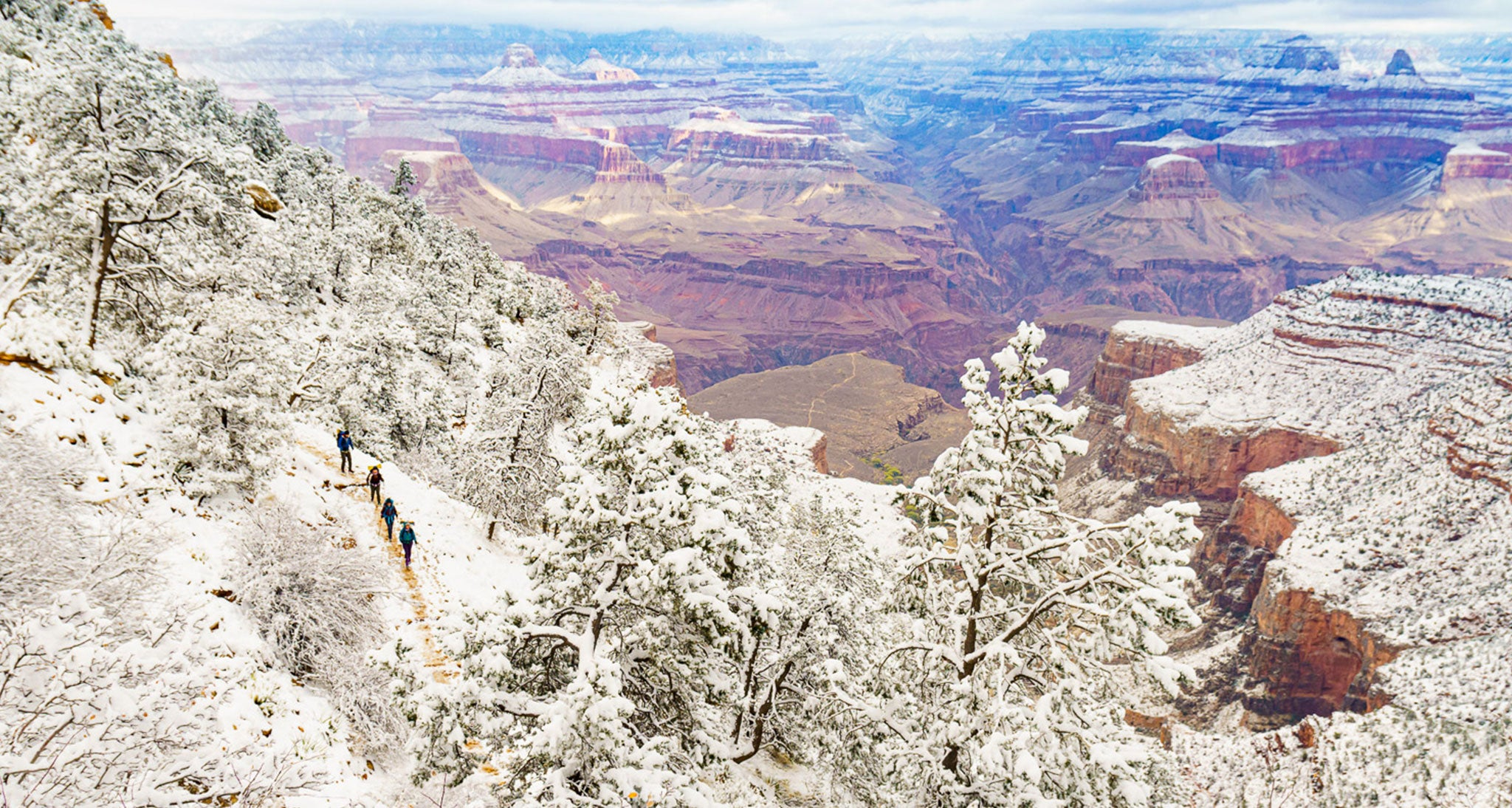 """Four backpackers descend Bright Angel Trail in Grand Canyon National Park just below the rim.  An early winter Pacific cold front brought 5-6"""" of new snow and morning temperatures in the teens at the 7000' rim.  The snow ending near the Redwall formation at around the 4500' level is quite common.  Snow can pile up several feet deep on the 8000' north rim and hardly fall at all at the river level.  In a stable atmosphere as with this system the rim to river temperature difference this day was only about 20 degrees but warm enough to descend far below the snow line and freezing temperatures."""