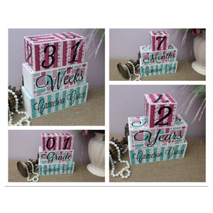 BABY MILESTONE BLOCKS  | Decorative Blocks