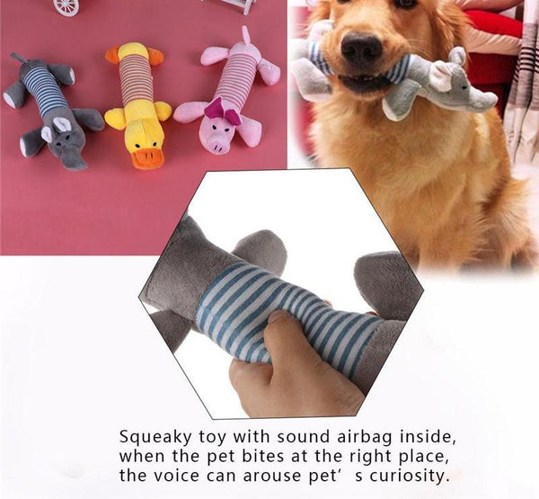 Pet Chewing Toy