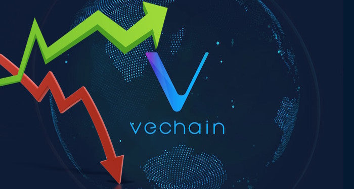 VeChain [VEN] the only token in the Top 20 in green – Effect of VeChain Thor?