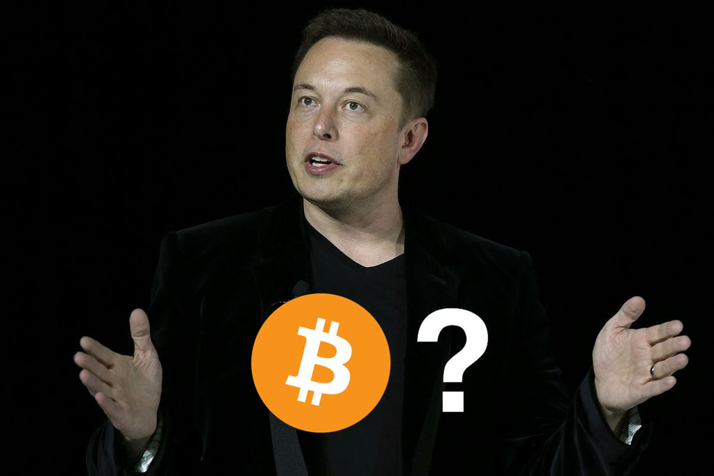 Elon Musk Reveals Personal Crypto Holdings