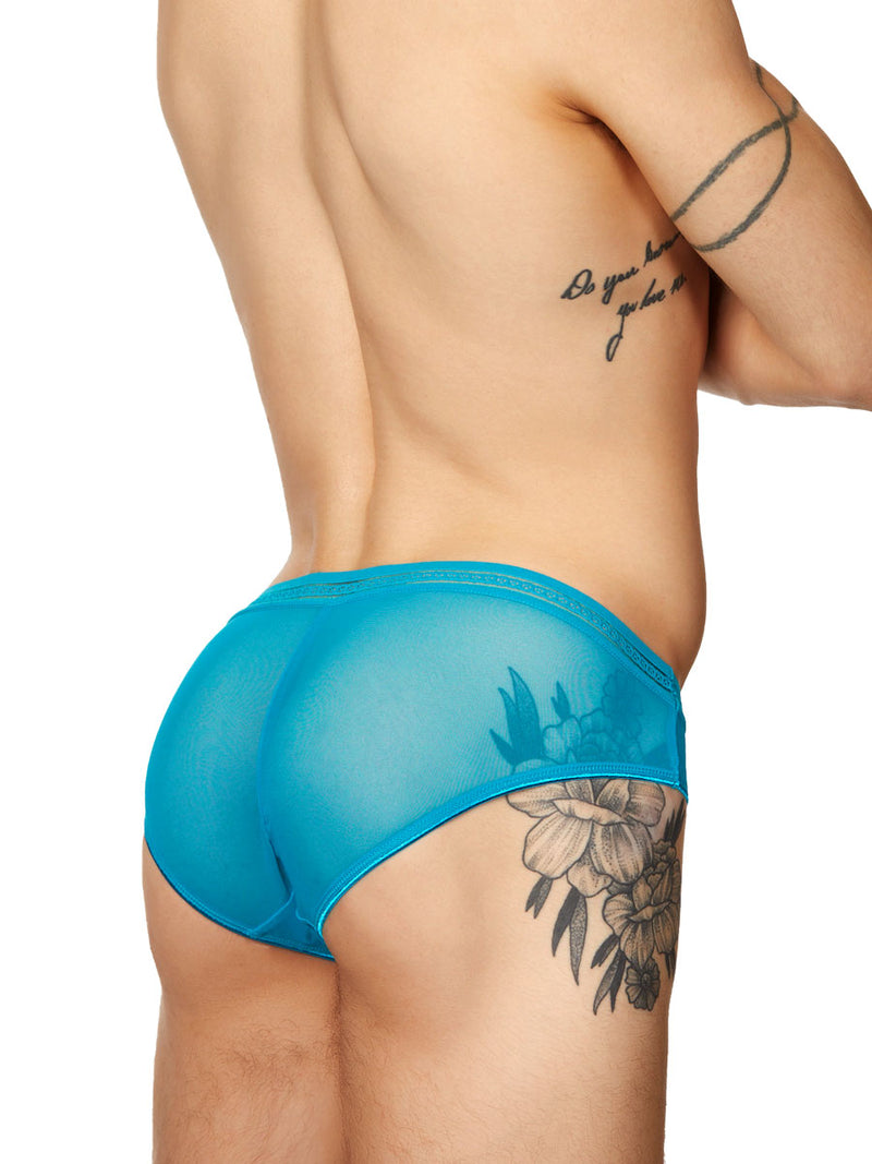 men's lacy blue mesh panties