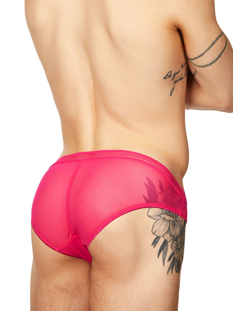men's lacy pink mesh panties