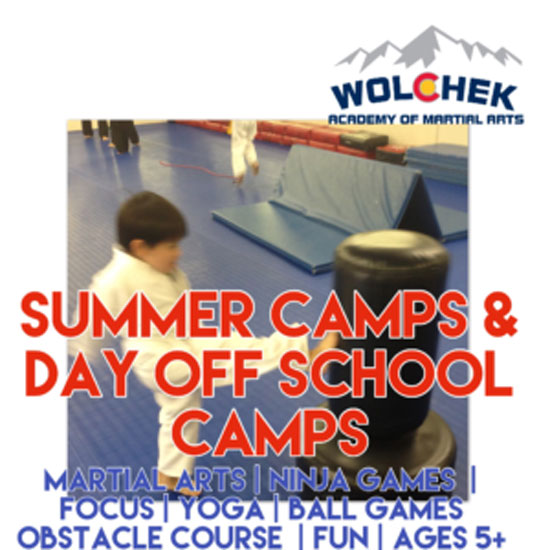 Karate Day & Summer Camps