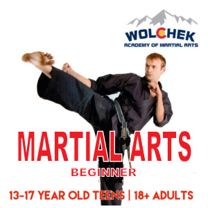 Beginner Martial Arts