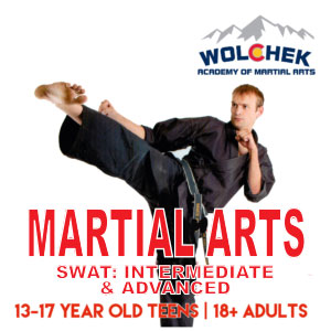 SWAT: Intermediate & Advanced Martial Arts