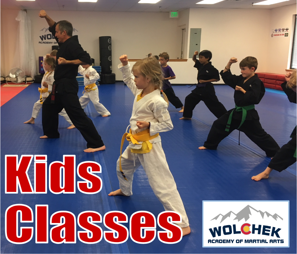 Beginner Kids Martial Arts | Wolchek Academy of Martial Arts