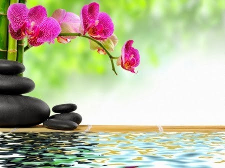 OLIVIE TIPS: 3 secrets to stay ZEN in all circumstances!