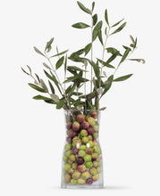 Desert olive tree pearls. Dr Gundry. Reinforce your immune system and improve your body and skin.