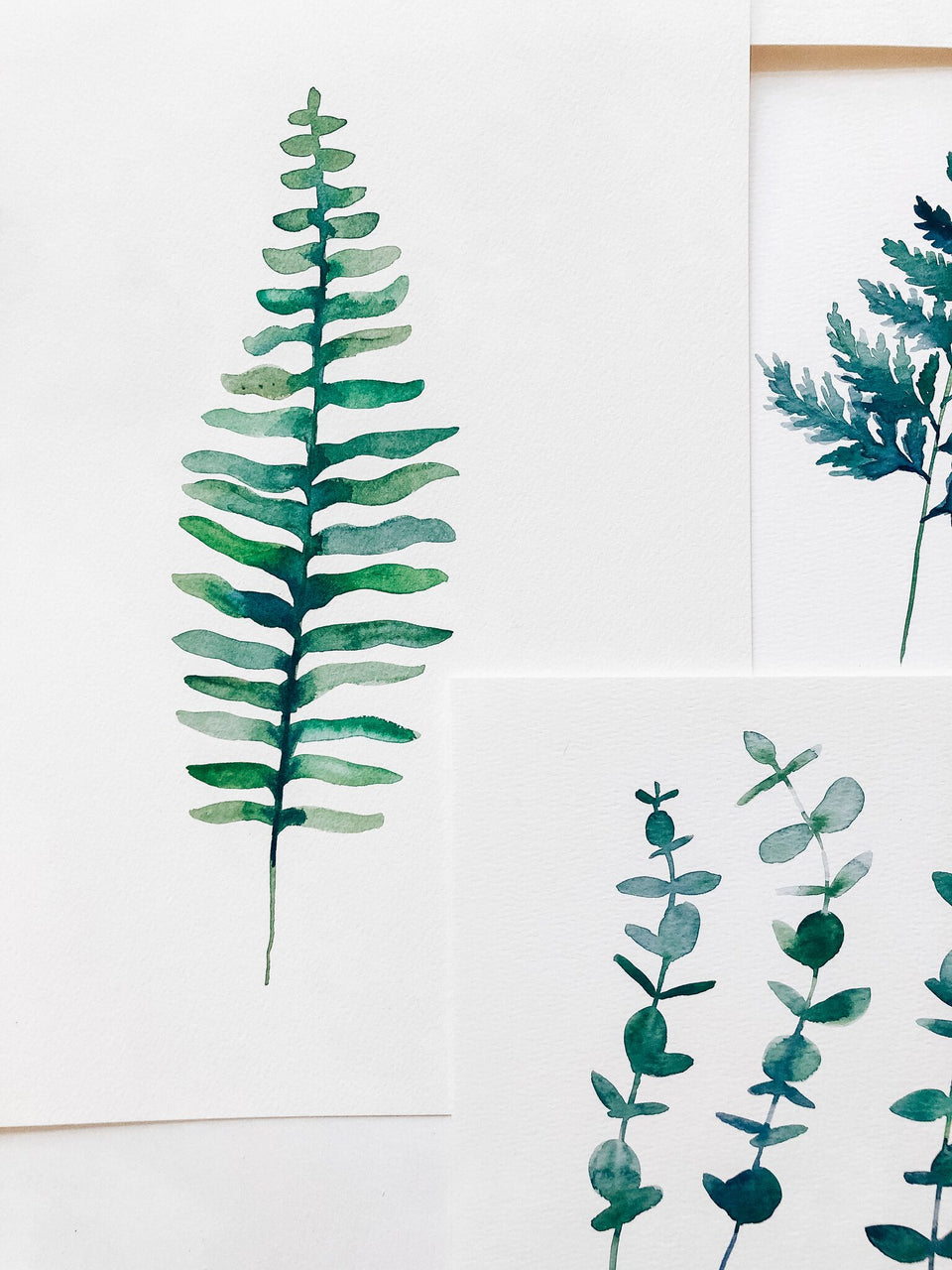 Watercolor Botanical Workshop