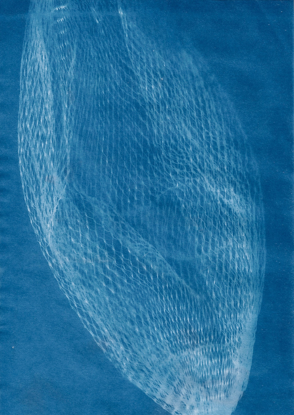 Experimental Cyanotype Workshop