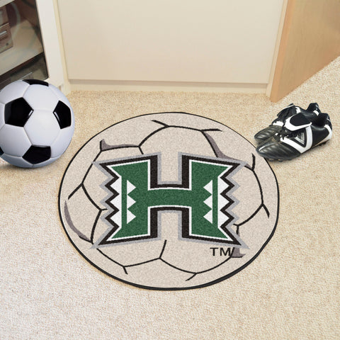 "Hawaii Soccer Ball 27"" diameter"