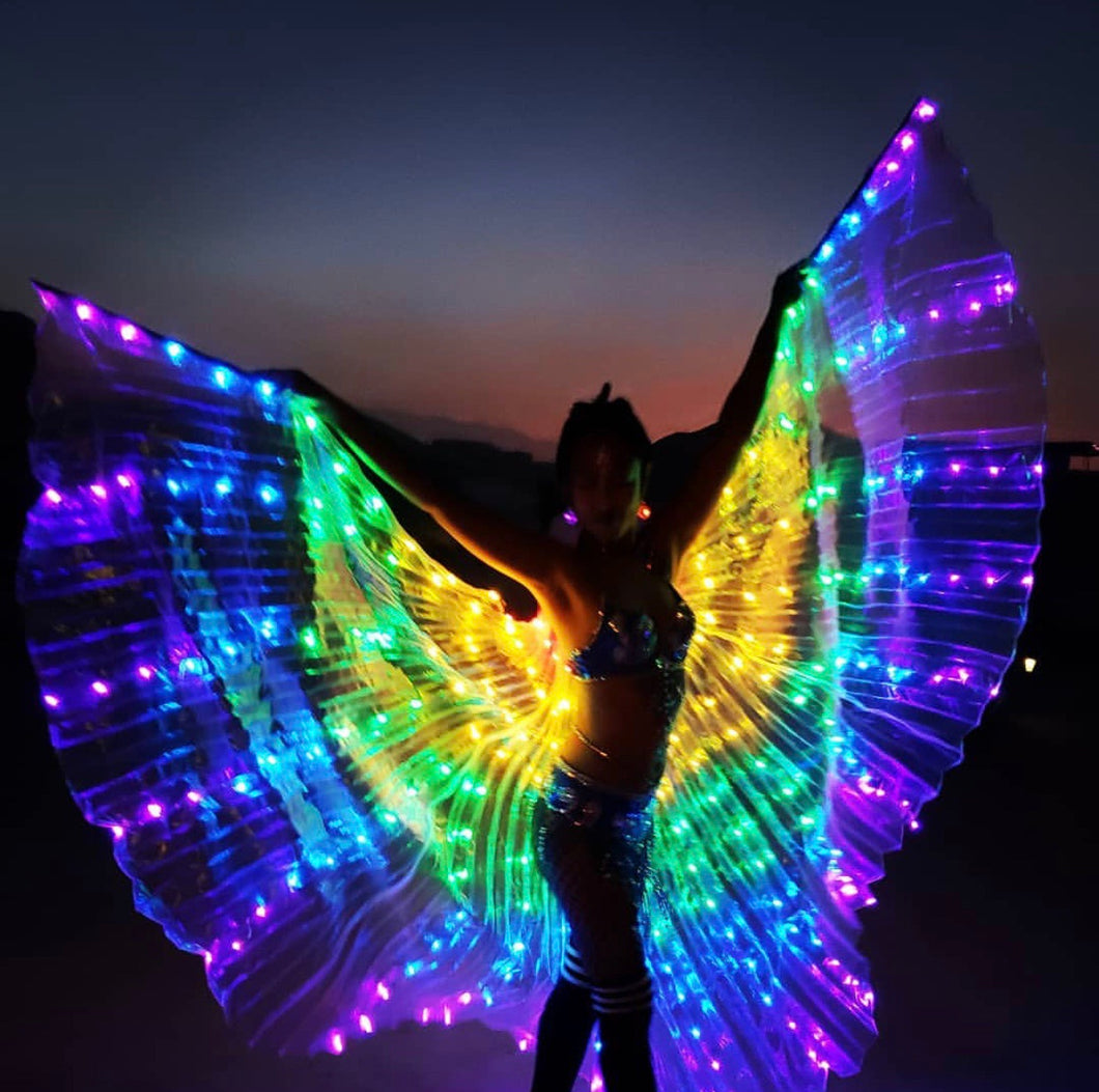 Handmade Rainbow LED Butterfly Wings (300 Lights, Batteries Not Included)