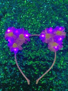 Original LED Ears - Purple Kitty