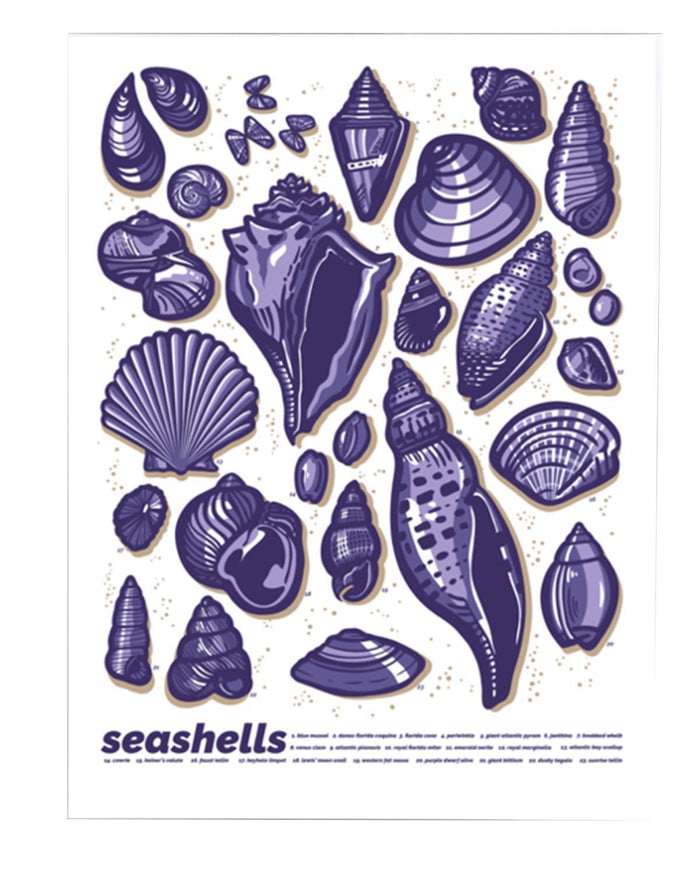 "Little brainstorm room Seashells Print (18"" x 24"")"