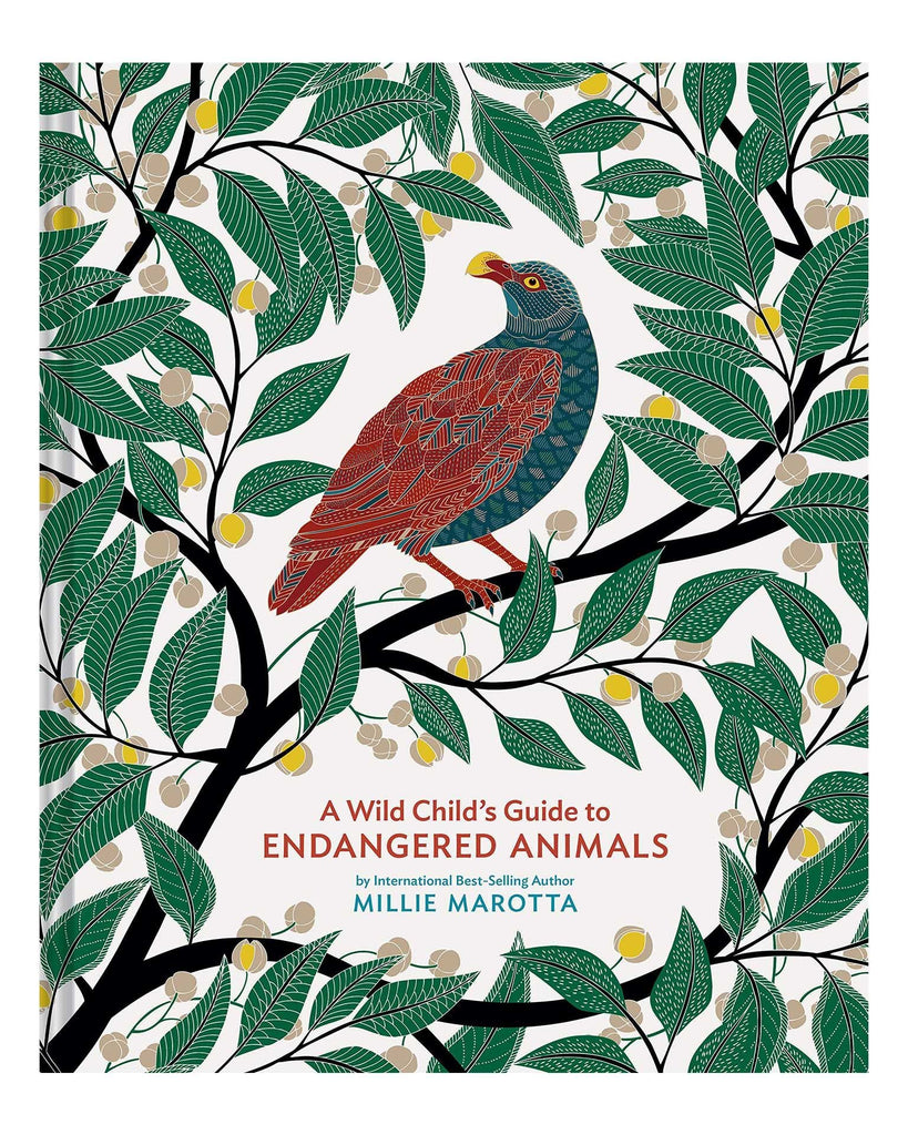 Little chronicle books play a wild child's guide to endangered animals