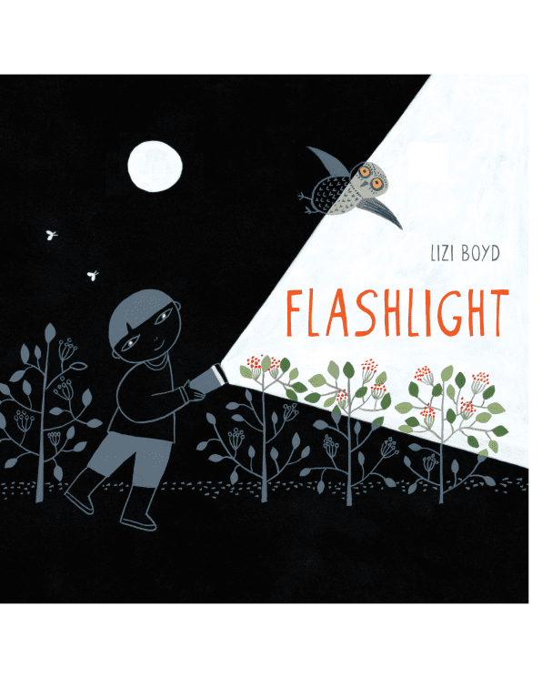 Little chronicle books play Flashlight