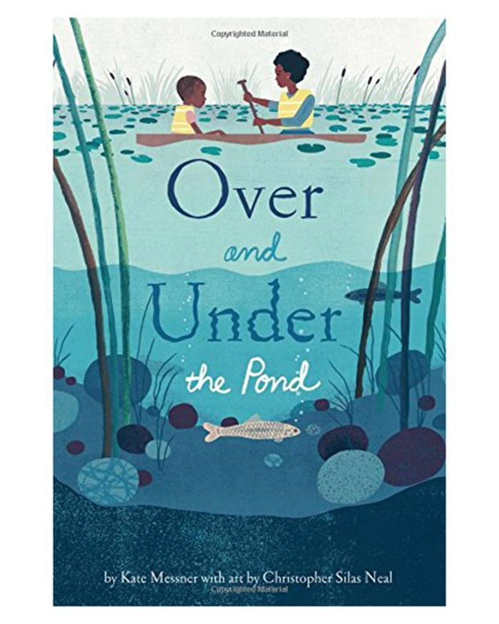 Little chronicle books play Over and Under the Pond