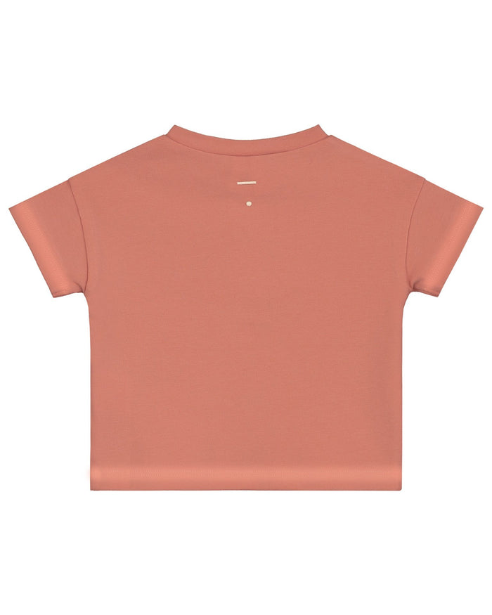 Little gray label baby boy baby short sleeve henley tee in faded red