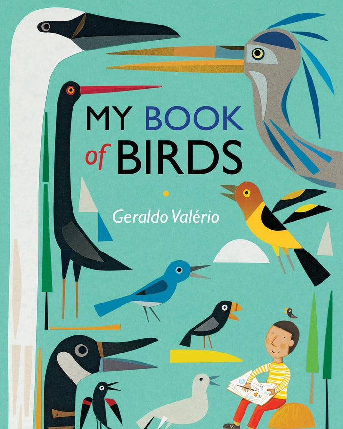 Little ingram books play My Book of Birds