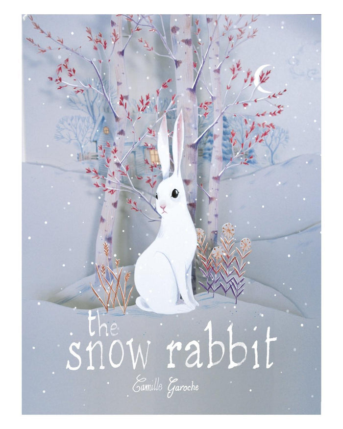 Little ingram books play the snow rabbit